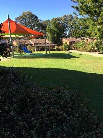 Boambee Bay Resort: Lawns