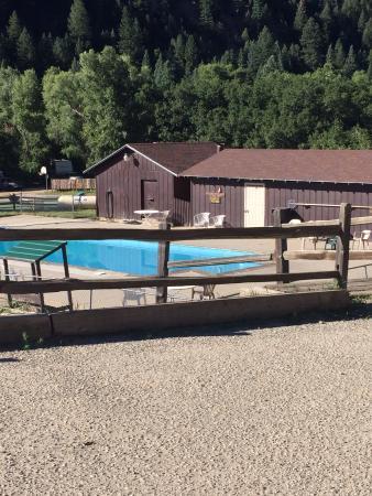 Cruise Inn - Cutty's Hayden Creek Resort: Pool