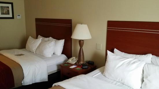 Comfort Inn & Suites: Camera 205