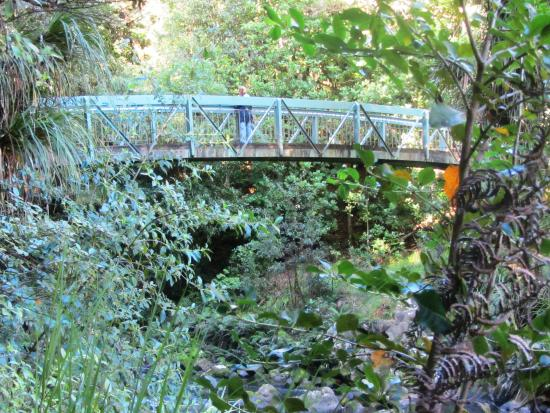 Whangarei, Nueva Zelanda: Walking bridge