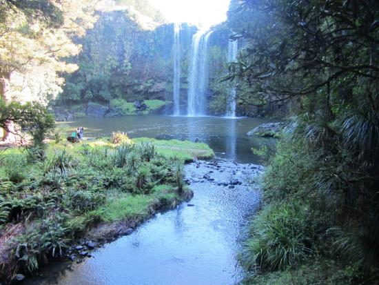 Whangarei, Nueva Zelanda: Falls from the walking bridge
