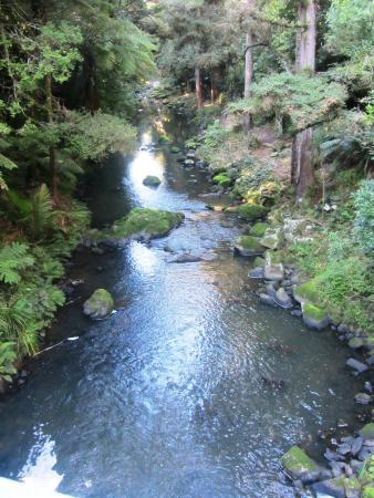 Whangarei, Nueva Zelanda: View down creek from bridge