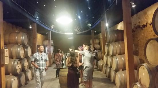 Valley Girl Baja Wine: A few glasses here