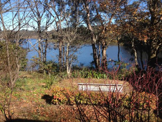Lakeside Bed and Breakfast: View across the garden