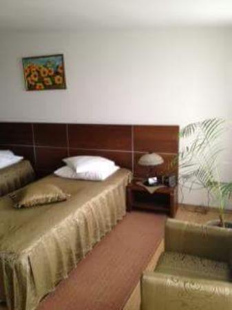 Hotel Valea Regilor
