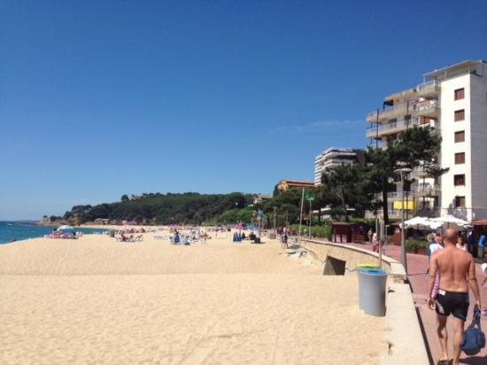 Hotel La Palmera: Plaża