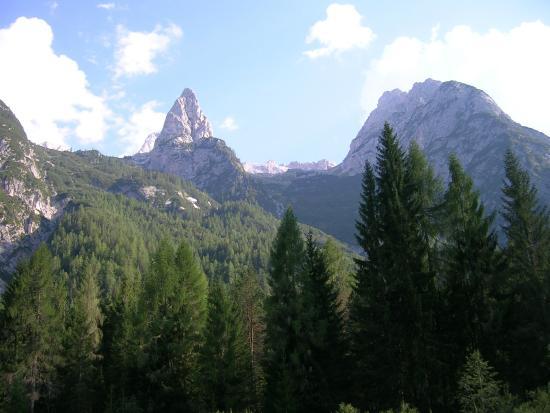 Auronzo di Cadore, Ιταλία: Foresta di Somadida