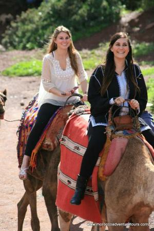 Splash Morocco Day Trips : Camel riding