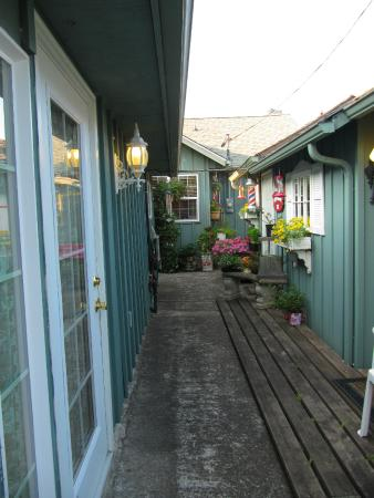 Shadynook Cottage: Walkway between Cottages 2 & 3