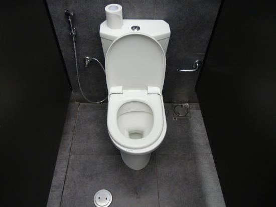 Bentota, Sri Lanka: Dortige Toiletten haben kleine Duschschläuche =D