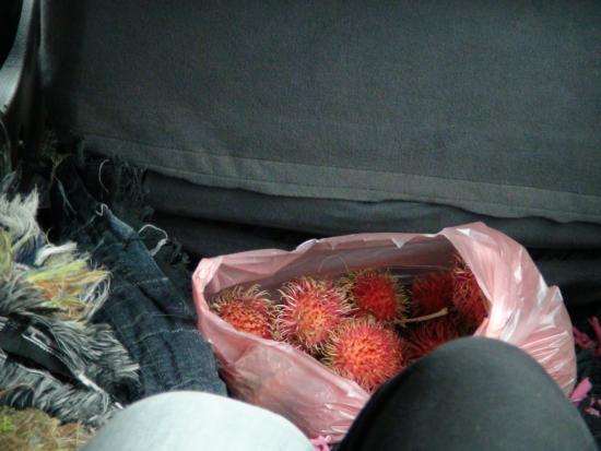 Bentota, Sri Lanka: Bei der Abholung am Flughafen gab' es diese einheimischen und sehr leckeren Früchte