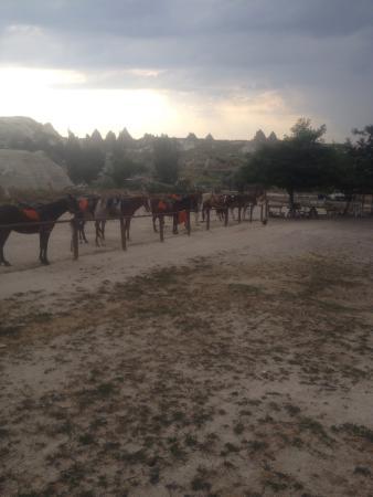 Goreme Ranch: Göreme Ranch