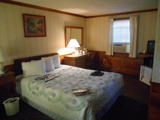 Clarendon Motel: Room picture
