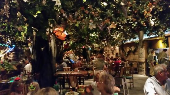 Good Meal Nice Atmosphere Review Of Rainforest Cafe Atlantic City Nj Tripadvisor