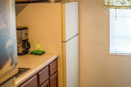 Roseloe Motel: Refrigerator