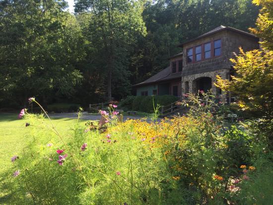 Laughing Heart Lodge & Hostel: photo4.jpg