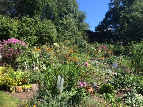 Hawk and Ivy B&B Retreat: Bountiful flowering gardens
