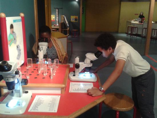 Sharjah Science Museum: Microscope station