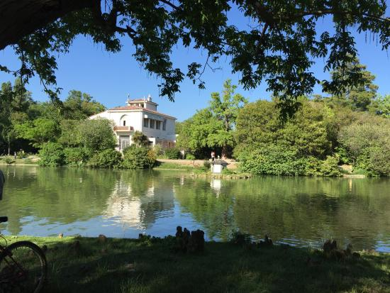 view of the chateau picture of parc borely marseille tripadvisor. Black Bedroom Furniture Sets. Home Design Ideas