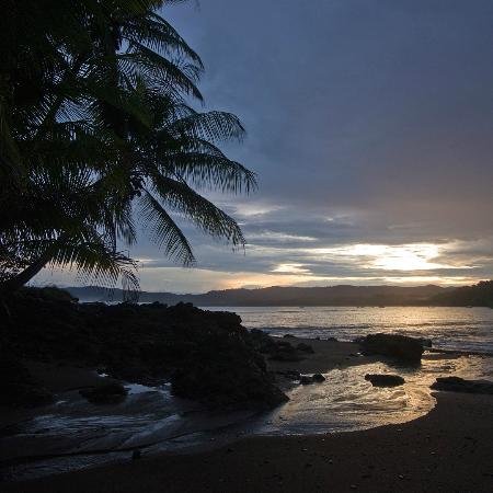 Jinetes de Osa Hotel: strand van het hotel