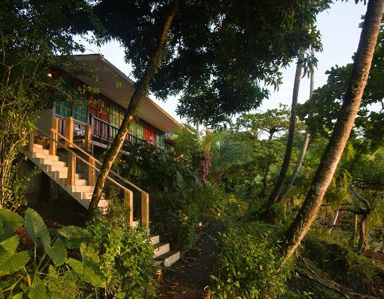 Fun and Exciting Hotel in Drake Bay, Costa Rica, Corcovado ...