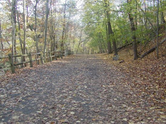Wissahickon Valley Park : Forbidden Drive