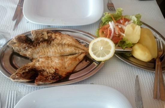 Restaurante O Febras: Gold fish and clams
