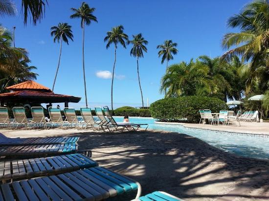 Rincon of the Seas Grand Caribbean Hotel : The pool