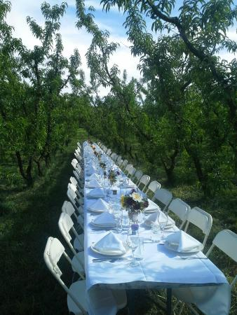 Leroux Creek Inn : Dinner at the neighbouring farm