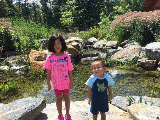 Robinson Nature Center: Beautiful butterfly garden