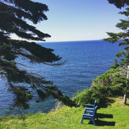 Cliffside Inn : View from the deck