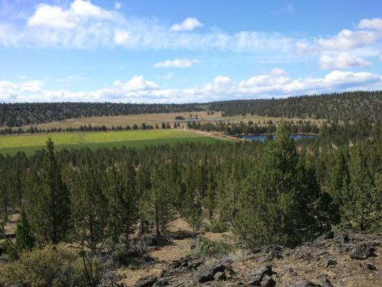 Long Hollow Guest Ranch : Trail ride scenery