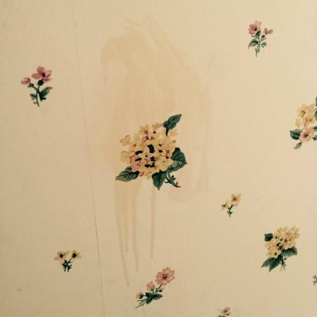 Basin Harbor Club: Stain on wallpaper-Don't even want to know what that is!
