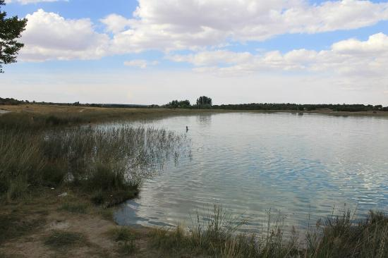 Resultado de imagen de laguna blanca lagunas de ruidera