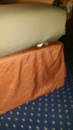 AmericInn Hotel & Suites Schaumburg : Used kleneex