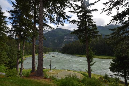 Chilkoot Haven: View from Chilkoot River Lodge