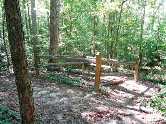 Visitor 39 s center picture of autrey mill nature preserve for Autrey mill