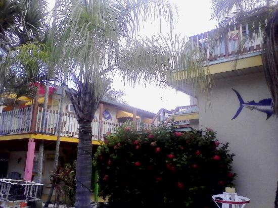Sun Deck Inn & Suites: Lots of decks to relax on...nice flowers....kind of an eccentric feel to it, the opposite of hip