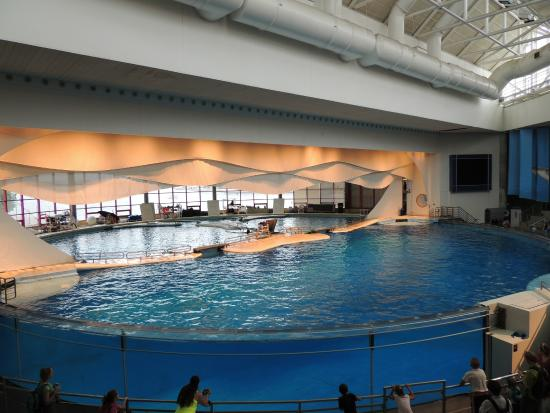 Picture Of National Aquarium Baltimore Baltimore Tripadvisor