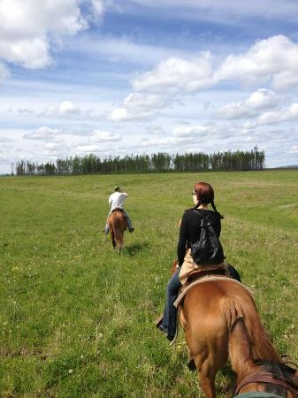 Fort St. James, Canada: Our trail guide leading the way across one of the beautiful fields. What incredible views!