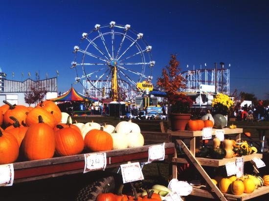 Chesaning's Saginaw County Fairgrounds