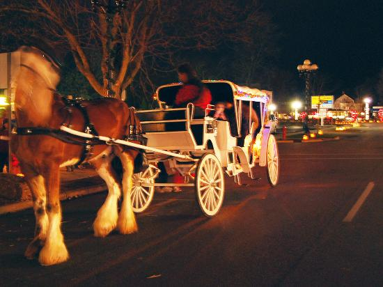 Chesaning Candlewalk Carriage Rides
