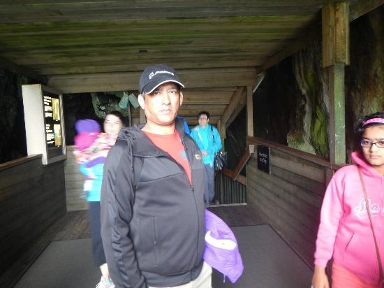 Флоренция, Орегон: sealion caves