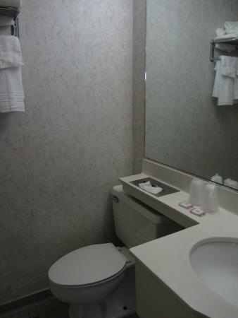 Pilgrim Inn: Toilet and hand basin