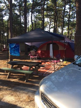 Photo of Maurice's Campground Wellfleet