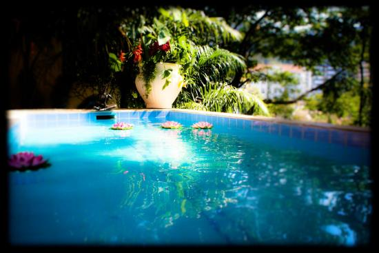 Gavea Tropical Boutique Hotel: Swimming Pool