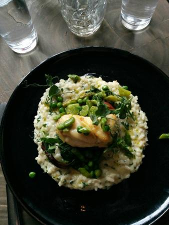 The Crown Inn: Monk fish on verde risotto