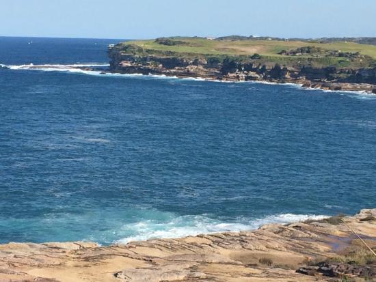 Bondi To Coogee Beach Coastal Walk South Headland Of Malabar Long Bay