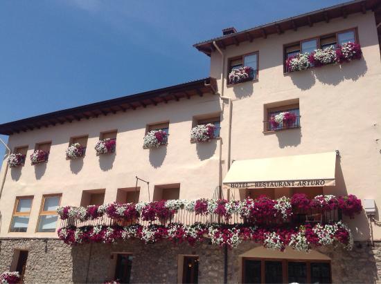 Hotel Arturo
