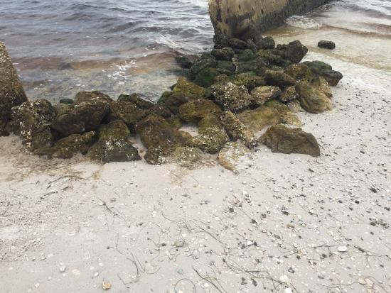 Ruskin, FL: Private beach